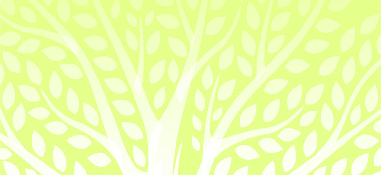 Rodna - 1920x1446px - podlaga zelena
